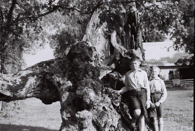 Iš kairės Prano Mažylio sūnėnas Jurgis Jankevičius ir Jonas Mažylis (Liudo tėvas), Šileikiškių kaime.