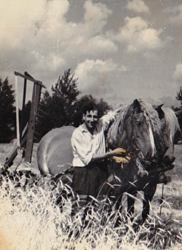 """Pirmasis """"Naujojo gyvenimo"""" kolūkio pirmininkas Adomas Petrauskas prie javų kertamosios, 1948 . GEK 691"""