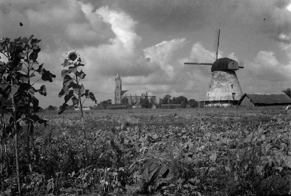 Kupiškio vėjo malūnas Atgimimo g. iš pietryčių pusės. Apie XX a. 3-4 deš.