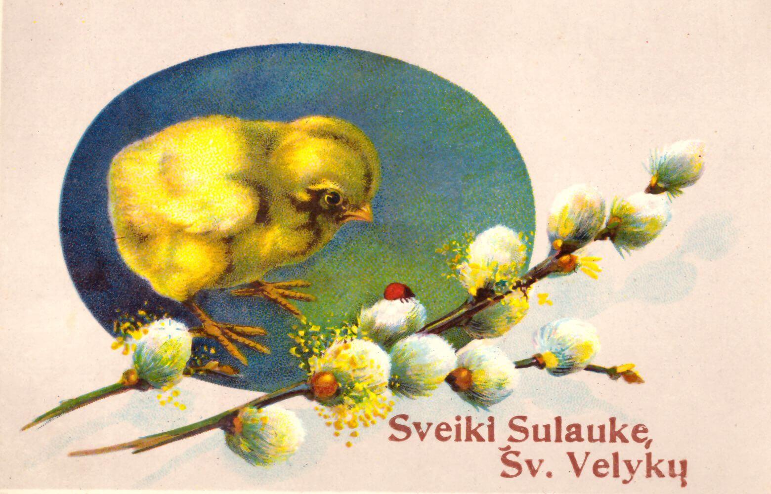 """8. P. m. PF 430/109 atvirukas """"Sveiki Sulaukę Šv. Velykų""""."""